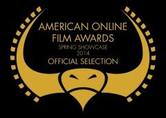 American On Line Film Awards